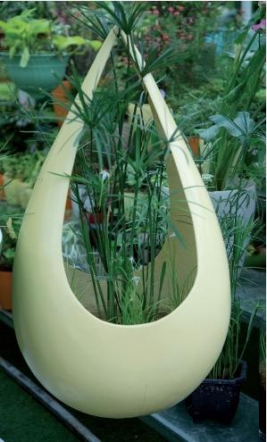 보기만 해도 시원한 푸른빛…수생식물 가꾸기