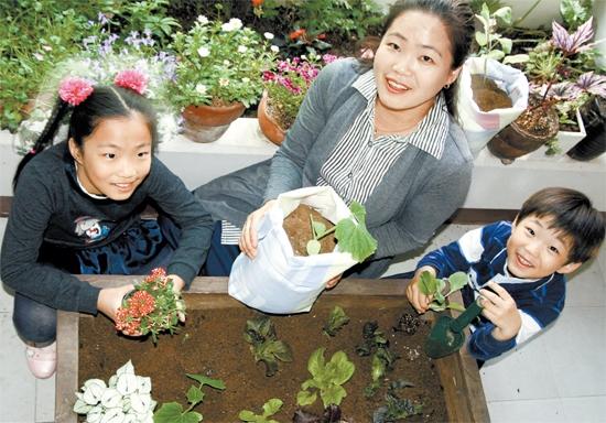직접 채소 길러 건강 챙기고 이웃과 소통은 덤으로 수확