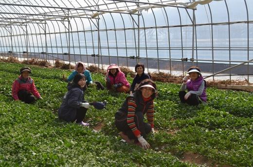 지리산 '에코 빌리지' 마근담, 유기농 식생활 체험 인기