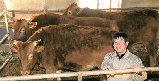 소 한마리 600만원인데…1300만원짜리 키운 한우왕