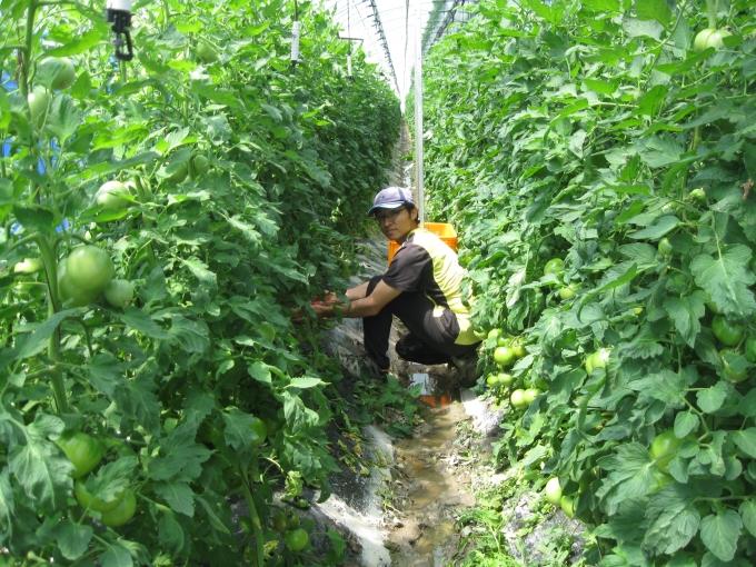 사회적 농장 만들어 지역사회 발전 기여
