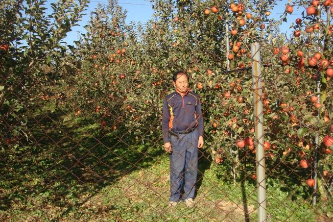시설 토마토·사과로 귀농성공 일구다